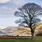 Crummock Water by David W Bailey