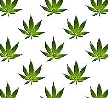 Marijuana Leaves Pattern Large II by cnstudio