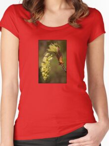 fresh popped big leaf maple bud, and bug Women's Fitted Scoop T-Shirt