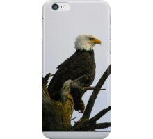 eagle striking a pose iPhone Case/Skin