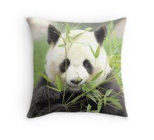 panda geant Throw Pillow