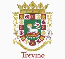 Trevino Shield of Puerto Rico by William Martin