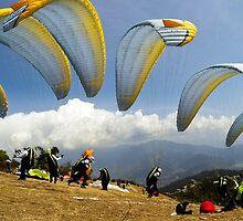 Paraglider by igotmeacanon
