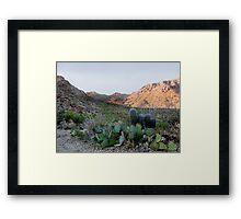 Tucson Mountains Framed Print