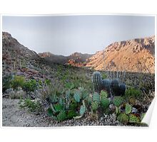 Tucson Mountains Poster