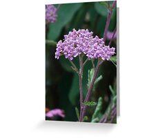 Pink flower cluster crown Greeting Card