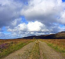 The Irish Bog Road by Fara