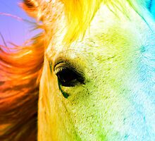 Rainbw Horse by EvaLivyStudios