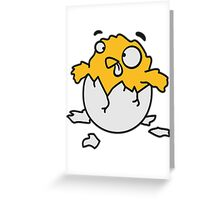 Freshly hatched crazy chicks Greeting Card