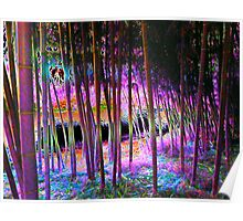 Pink Bamboo Poster