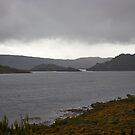 Lake Pedder  by Odille Esmonde-Morgan