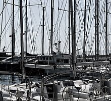 d-marin turgutreis by gzmguvenc89