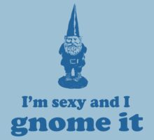 I'm Sexy and I Gnome It by wondrous