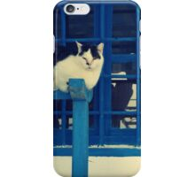 blue door and the cats iPhone Case/Skin