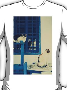 blue door and the cats T-Shirt