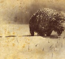 Morning Bison 2 by cs3ink