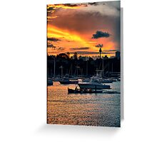 Rose Bay marina Greeting Card