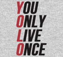 YOLO You Only Live Once by Alan Craker