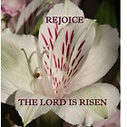 The Lord is Risen ipad case by hummingbirds