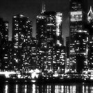 Black and White Chicago by Brian Gaynor