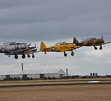 Southern Knights Harvards, Point Cook Airshow, Australia 2014 by muz2142