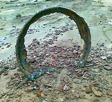 I threw it in the sea and it came back to me rusted and troubled. by PJ Ryan