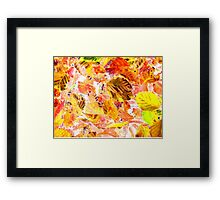 Autumn Leaves Abstract Framed Print