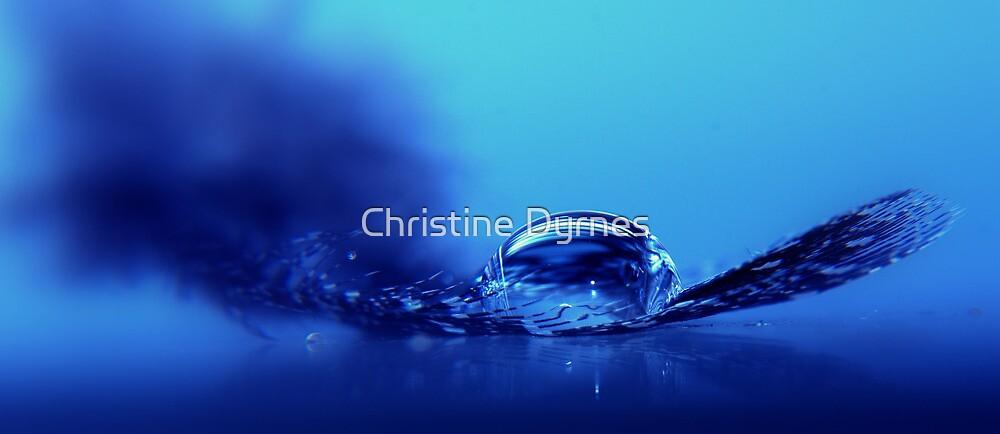 Resting place2 by Christine Dyrnes