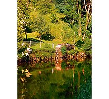 Green life, a river and reflections | waterscape photography Photographic Print