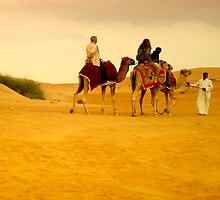 desert life in dubai by gzmguvenc89
