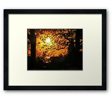 Sunset 54 Framed Print