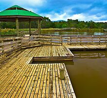 Lilydale Lake Rotunda Vic Australia by PhotoJoJo