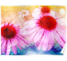 Rainbow Colored Coneflowers Poster