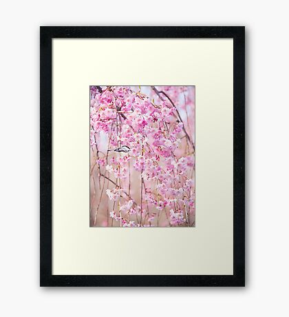 Black Cap Chickadee & Pink Weeping Willow Framed Print