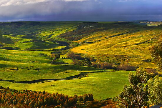 Rowsley Valley by David  Hibberd