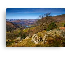 Across to Rydal Water Canvas Print