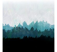 Woods Abstract Photographic Print