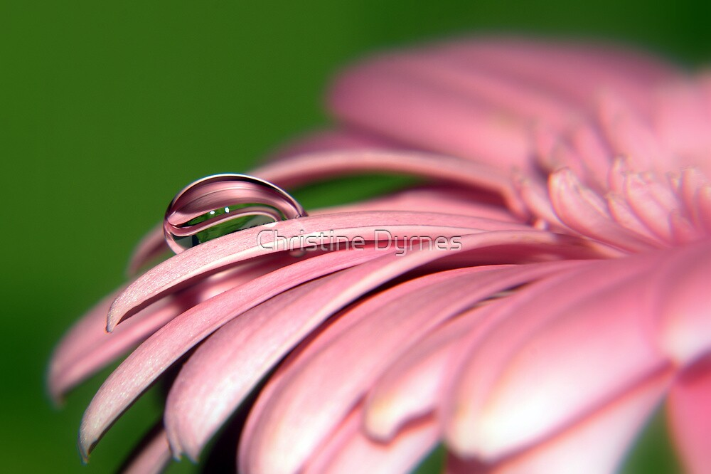 Striped drop by Christine Dyrnes