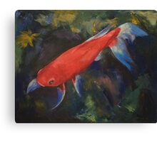 Haiku Koi Fish Canvas Print