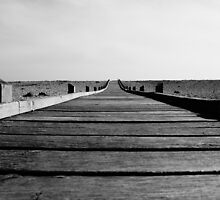 The Walkway by ArtemBonda