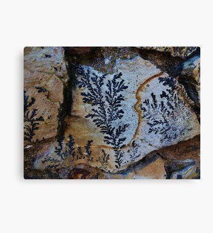 Nature Picks up Her Brush Canvas Print