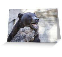 Beary Happy Greeting Card