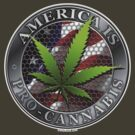 America is Pro Cannabis by Kowulz