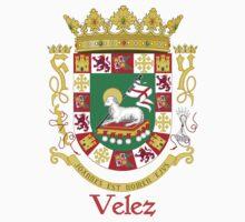 Velez Shield of Puerto Rico Baby Tee