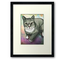 Potter the Cat Framed Print