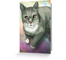 Potter the Cat Greeting Card