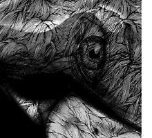 woman  by Patrycja Lewicka