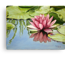 Lotus in the Water Canvas Print
