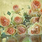 Antique Roses by korinneleigh