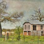 Old Farmhouse by venny